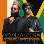 Afro B ft Busy Signal go dance