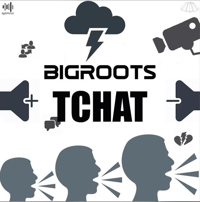 Bigroots - Tchat