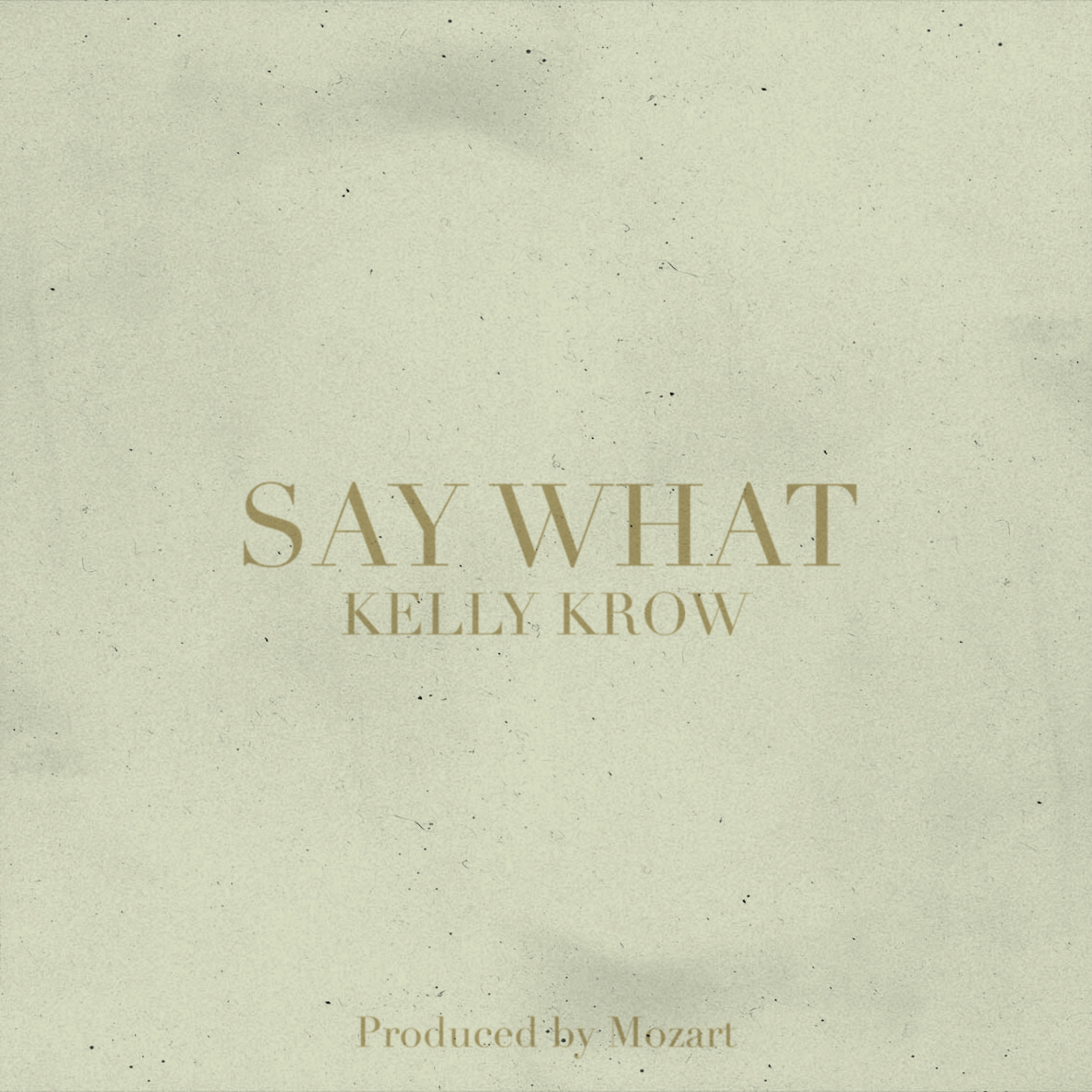 saywhat_cover